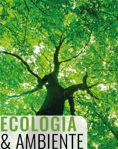 dmb_consulting-ecologia&ambiente